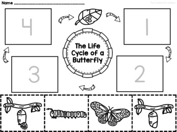 The Life Cycle of a Butterfly {printable mini book