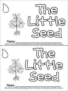 The Little Seed- Plant Life Cycle Emergent Reader for