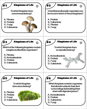 The Six Kingdoms of Life Task Cards: Plants, Animals
