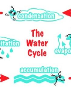 The water cycle diagram also teaching resources teachers pay rh teacherspayteachers