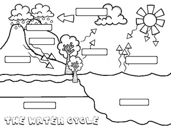 The Water Cycle Posters and worksheets by For the love of