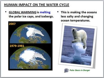 The Water Cycle PowerPoint Editable by Tangstar
