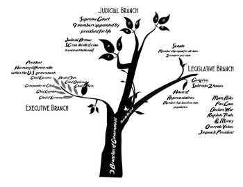 Three Branches of U.S. Government Tree Diagram by