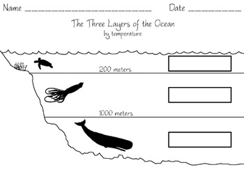 Three Layers Of The Ocean By Temperature worksheet
