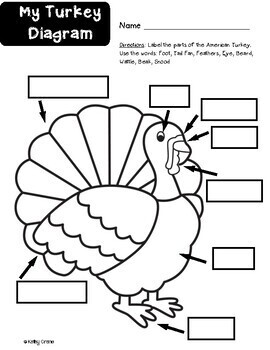 Turkey Research and Report by Kindergarten Kiosk Kathy