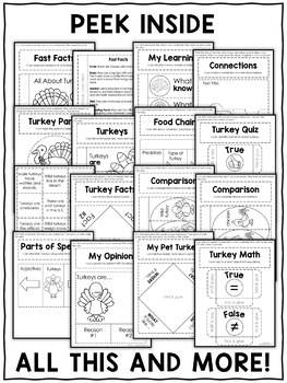 Turkey Interactive Notebook Activities by Nicole and