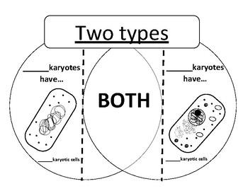 Venn Diagram of Prokaryotes vs Eukaryotes by