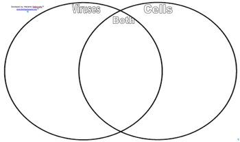 86 CELLS VS VIRUSES VENN DIAGRAM SORT ANSWERS, ANSWERS