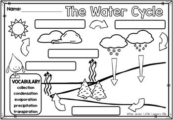 Water: All about water non-fiction unit {including the