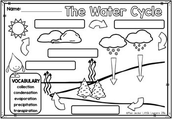 Water Cycle: A non-fiction mini unit by Miss Jacobs