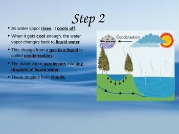 Water Cycle UNIT PowerPoint and Interactive Notes 4th