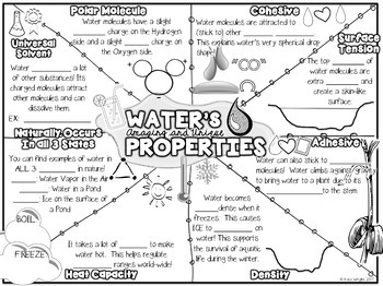 Properties of Water Doodle Notes by Kate's Classroom Cafe