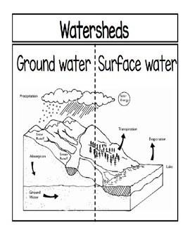Water Cycle Diagram Worksheets Plants Diagram Worksheet
