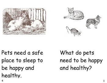 What Do Pets Need?- a non-fiction guided reading book by