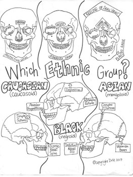 Which Ethnic Group? Forensic Anthropology Sketch Notes