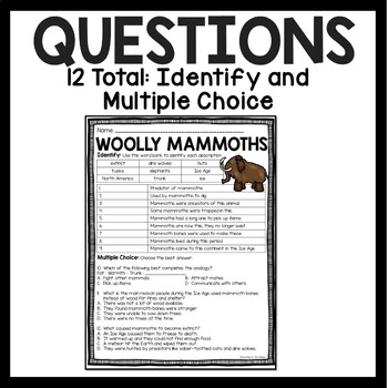 Woolly Mammoths Reading Comprehension Worksheet by