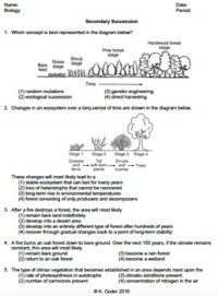 Worksheet - Secondary Ecological Succession *EDITABLE* | TpT