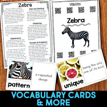 Zebra: Informational Article, QR Code Research & Fact Sort