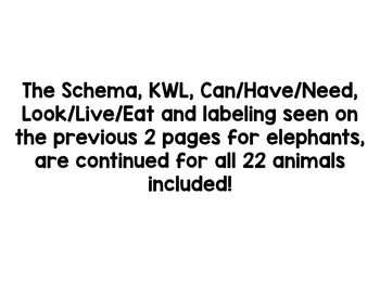 Zoo Animals Research And Writing Project! by Kindergarten