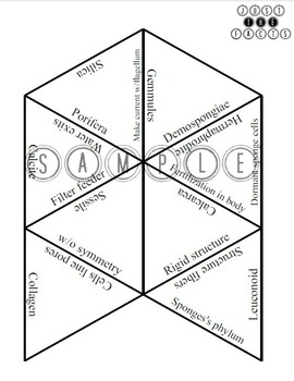 Zoology Vocab Puzzle: BUNDLE with ANSWER KEYS by JUST THE