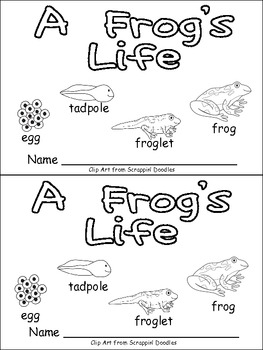 A Frog's Life Emergent Reader for... by Melissa Williams