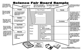 Science Fair Display Board Sample by No Fluff Just Good