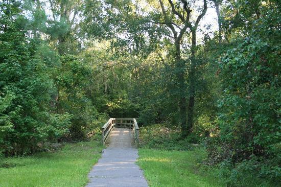 photo of bridge at Camp Milton