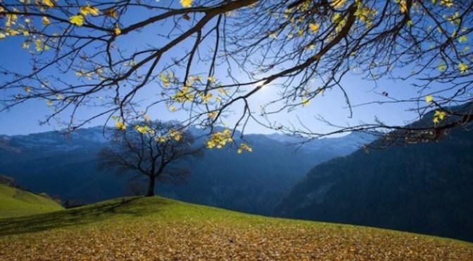 Earth is our Mother a paper by P. Parameswaran President, Vivekananda Kendra, Kenyakumar, Bharat (India)