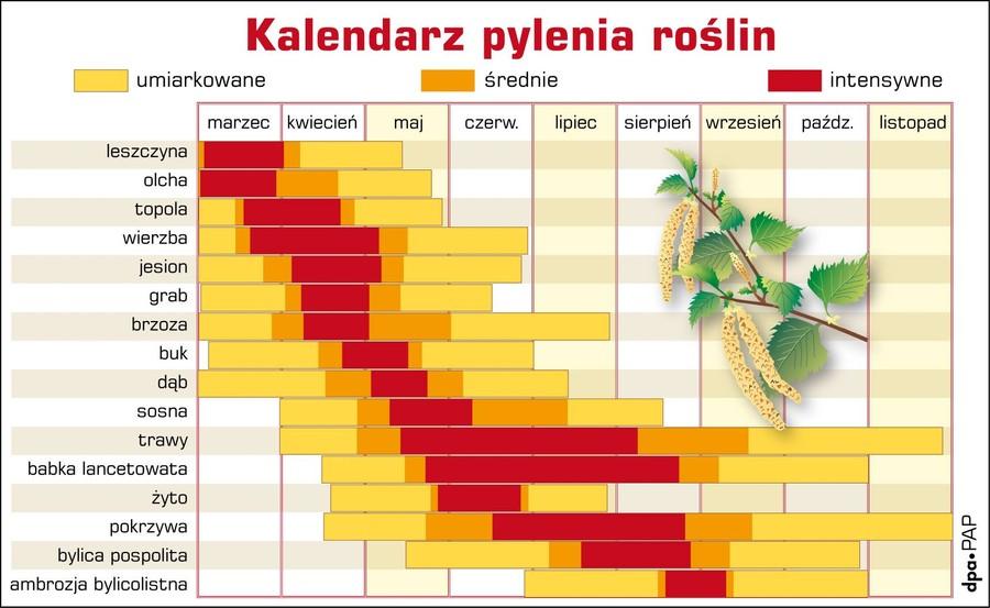Kalendarz Pylenia Roslin