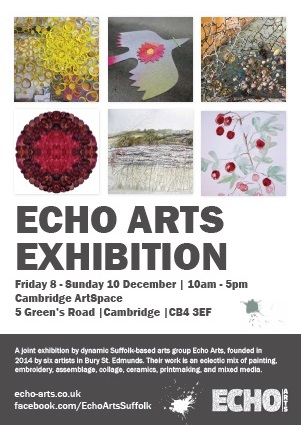 Echo Arts Exhibition Cambridge