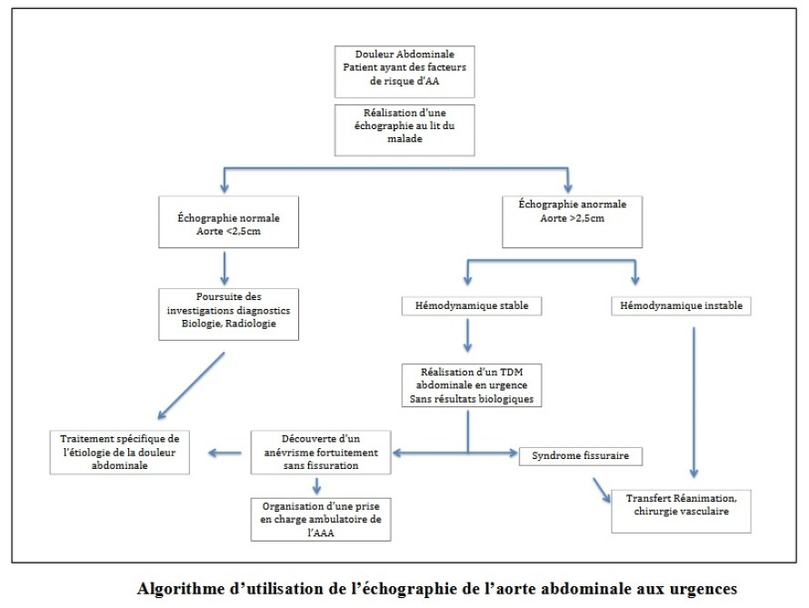 algorythme-d-utilisation-de-l-echographie-de-l-aorte-abdominale-aux-urgences