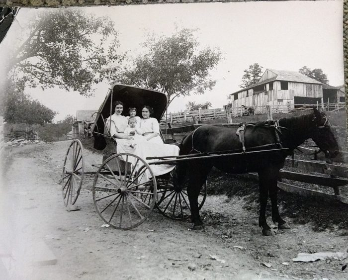 Taken in the lane at William Garman's house. Women left - Lilly Garman holding William Crawford right - Luemma Garman holding Earl Garman Taylor.