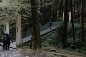 本來想試試走這一條吊橋,不過剛好有二十多人走上了這條只能承受五個人的吊橋還要搖晃和跳,我還是放棄了
