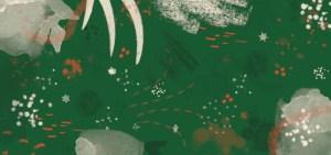 échoppe végétale de noel pour des idées cadeaux écolo originales à glisser sous le sapin cultivé en france