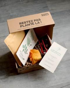 box jardinage balcon automne pot et jardinière, ail des ours, pois de senteurs, septembre, octobre, novembre, boite en carton échoppe végétale