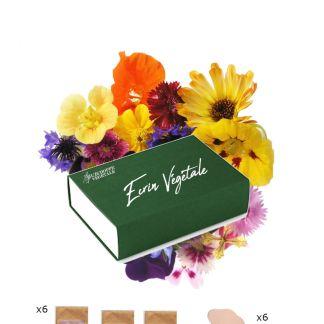 écrin végétal, coffret graines bios fleurs comestibles et mellifères pour les abeilles, idée cadeau jardinage balcon pour noel