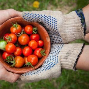 gants de jardinage au balcon