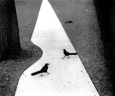 houston-texas-1978-pentti-