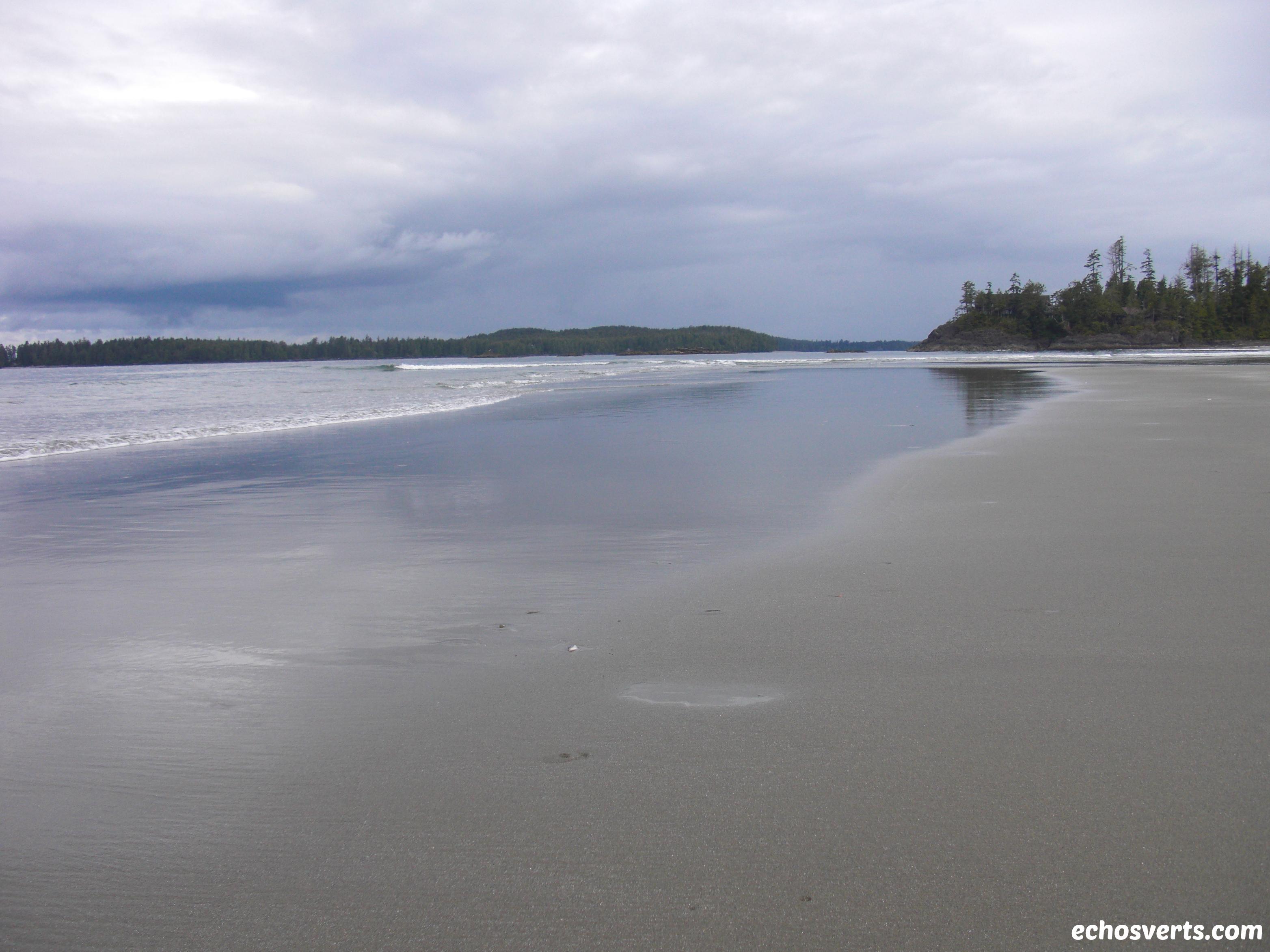 Plage Tofino- Ile de Vancouver- Copyright- échos verts