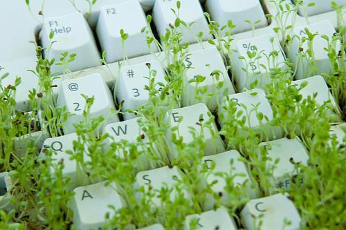 clavier vert