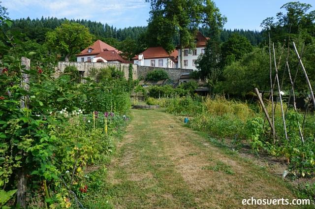 Jardin du monastère- Freiburg- echosverts.com
