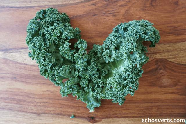 Chou Kale echosverts.com