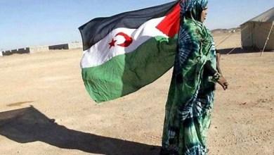 صورة الجزائر تدعو لتعجيل استفتاء تقرير المصير في الصحراء