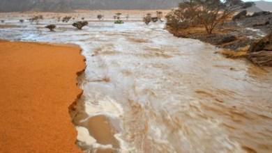 صورة موريتانيا : تساقطات مطرية على 5 ولايـات ( مقاييس)