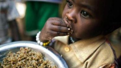 صورة الفاو: 11% من سكان العالم يعانون من سوء التغذية