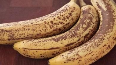 صورة 8 فوائد لتناول الموز الأسود.. أبرزها الوقاية من السرطان