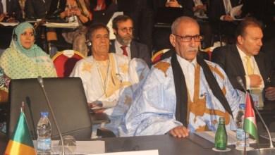 """صورة قيادي صحراوي: مشاركتنا في قمة """"أبيدجان"""" انتصار هام للقضية"""