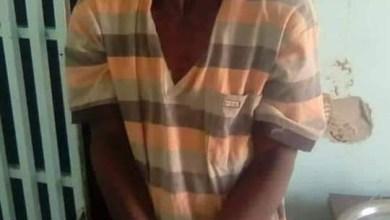 صورة الشرطة تلقي القبض على جزار يبيع لحوم الحمير في مقاطعة بوكى