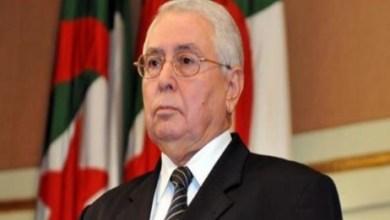 صورة الجزائر .. تحديد موعد الإنتخابات الرئاسية