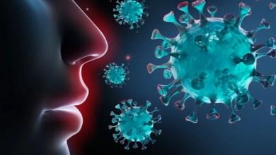 صورة المركز الأوروبي لمكافحة الأمراض يحذر من خطورة سلالات كورونا المتحورة